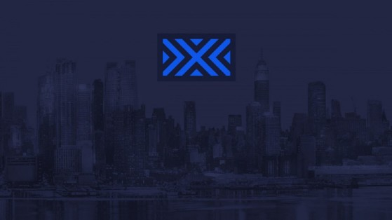 Overwatch League New York Excelsior NYXL: composition, roster, logo