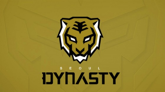 Overwatch League Seoul Dynasty: composition, roster, name, logo