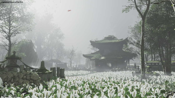 Ghost of Tshushima Guide: Haïkus locations