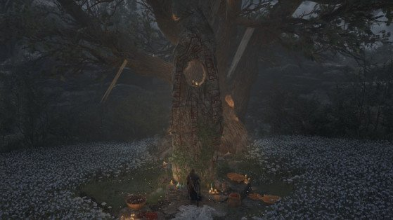 Assassin's Creed Valhalla: Wrath of the Druids: Meath Offering Altar guide