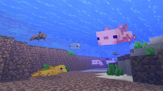 Image courtesy of minecraft.net - Minecraft