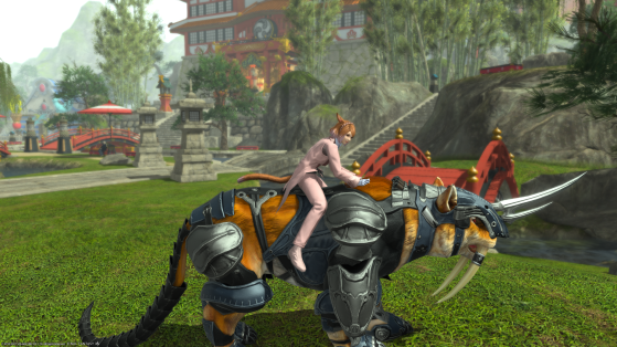 Here's how to get the tank mounts in FFXIV