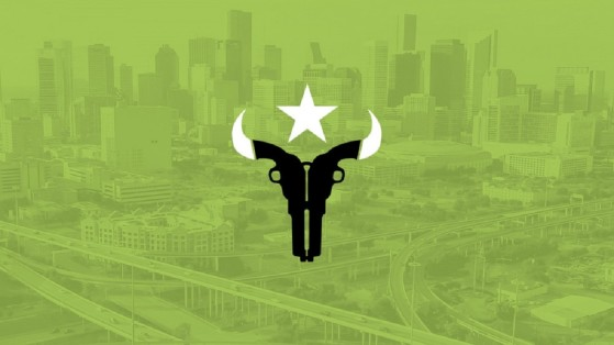 Overwatch League Houston Outlaws: composition, roster, logo