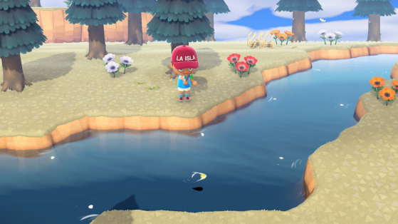 Animal Crossing New Horizons: New images never seen before