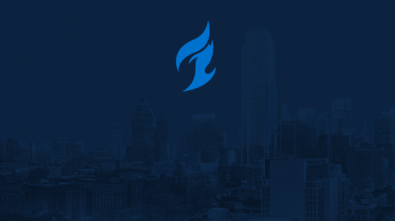 Overwatch League Dallas Fuel: composition, roster, name, logo
