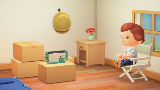 Animal Crossing New Horizons Get A Switch Console In Game