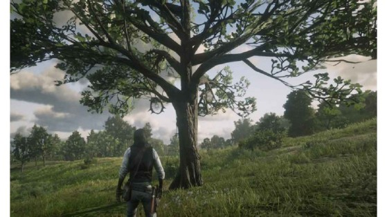 Red Dead Redemption 2 Guide: Dream Catchers