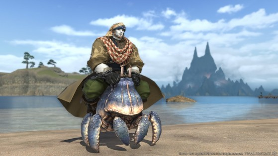 FFXIV 5.41 How to get the Big Shell Mount Guide