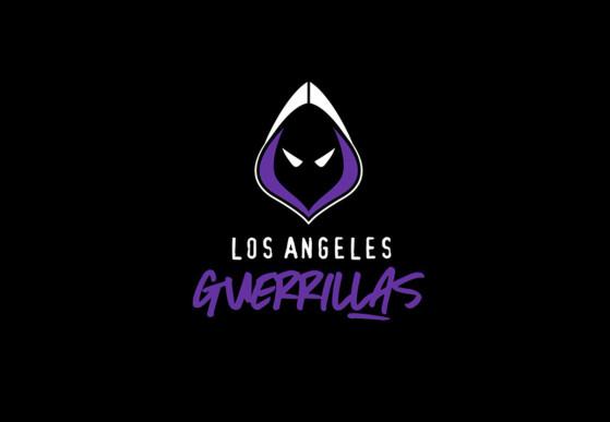 Call Of Duty League 2020 Los Angeles Guerrillas Team Profile