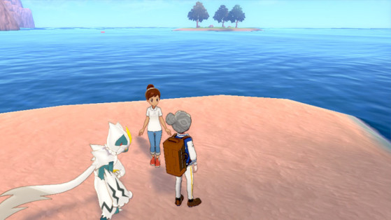 Pokemon Sword and Shield Expansion: How to Instantly Reset EV