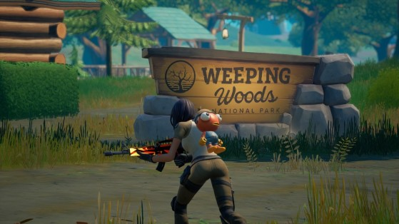 Fortnite Week 4 Challenge: Place missing person signs in Weeping Woods and Misty Meadows