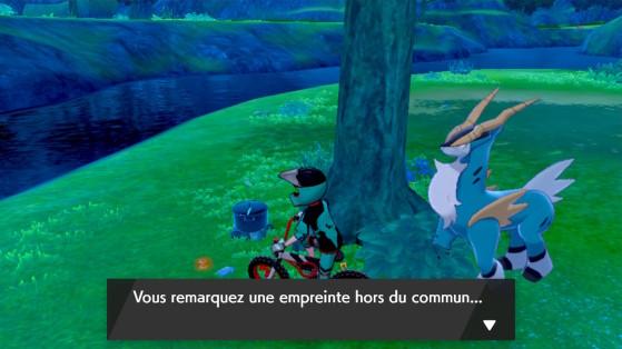 Here? prints! - Pokémon Sword and Shield