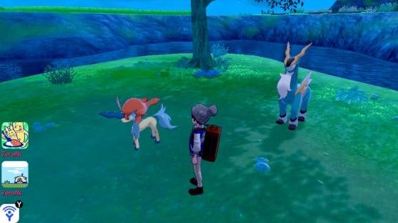 A wild Keldeo appears! - Pokémon Sword and Shield