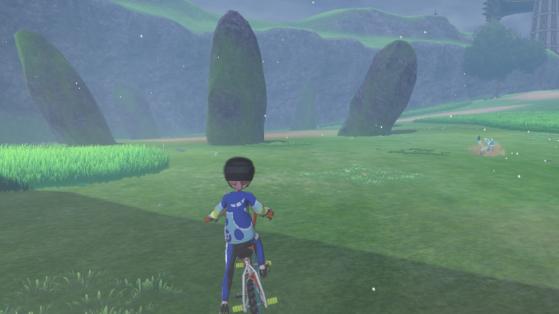 Pokemon Sword, Shield: Wild Area in details