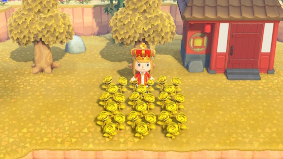 Animal Crossing New Horizons Gold Roses How To Get Them